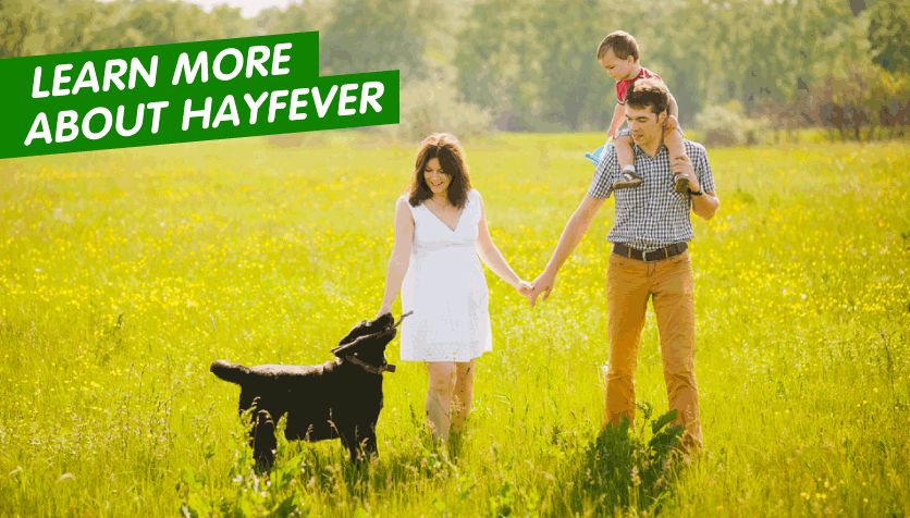 learn-more-about-hayfever
